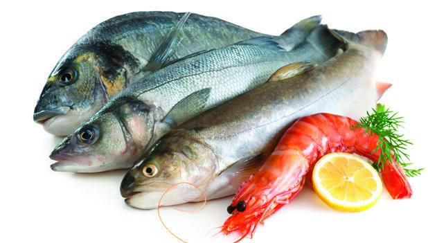 web-CE_0915_Seafood2_72351688