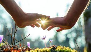 Reconnective Healing Seminar in North Haledon