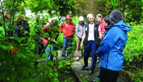 Native Medicinal Gardening Day in West Milford