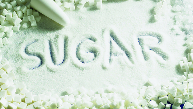 web_Sugar-Barone PHOTO JAN17-adj