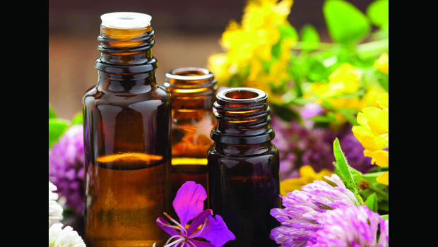 web_nb_Essential-Oils PHOTO JAN 17-adj