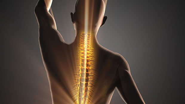 Detoxification Through Chiropractic Care | Dr. Sherin Bourne | Natural Awakenings Central New Jersey