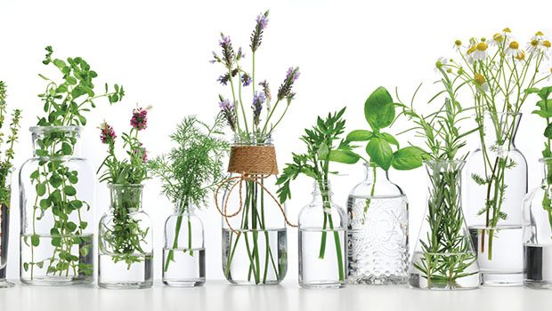 2017 Aromatherapy Conference and Wellness Expo - Natural Awakenings