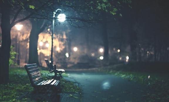 Light And Dark Natural Awakenings Atlanta