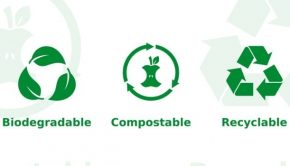 plant-based-plastic-alternative
