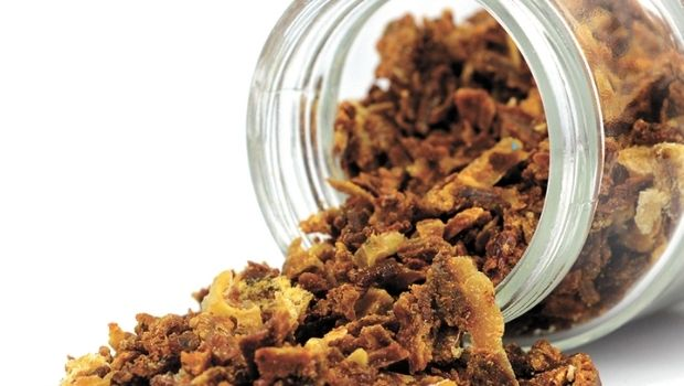 Propolis-respiratory-tract-infections