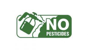 no-pesticisdes